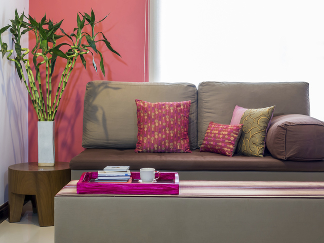 Thinkstock The lucky bamboo, part of the dracaena family of plants, tend to thrive indoors in Southern Nevada.