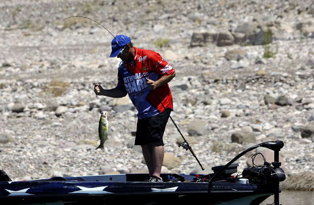 Bass fishing pro Tim Klinger pulls in a 3-pound bass while fishing Lake Mead in 2010. (Review-Journal file photo)