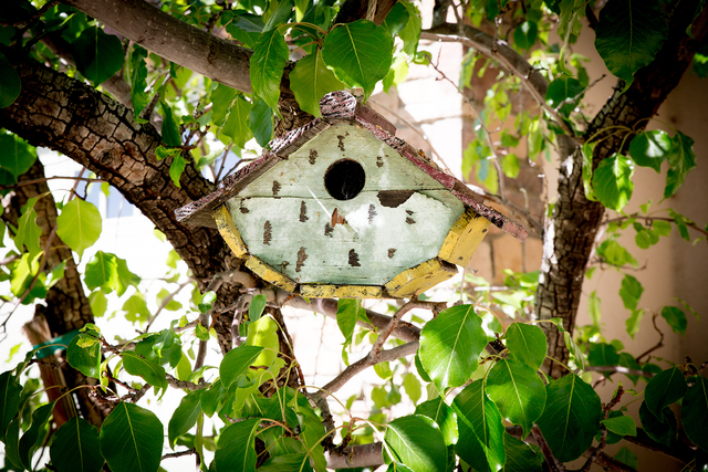 Tonya Harvey/Real Estate Millions  Cindy Coletti keeps a bird house in her garden area at her home at The Lakes.