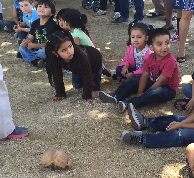 Students at Gragson Elementary School check out a turtle from Roos-N-More Zoo April 17, 2015. (Courtesy McDonald's)