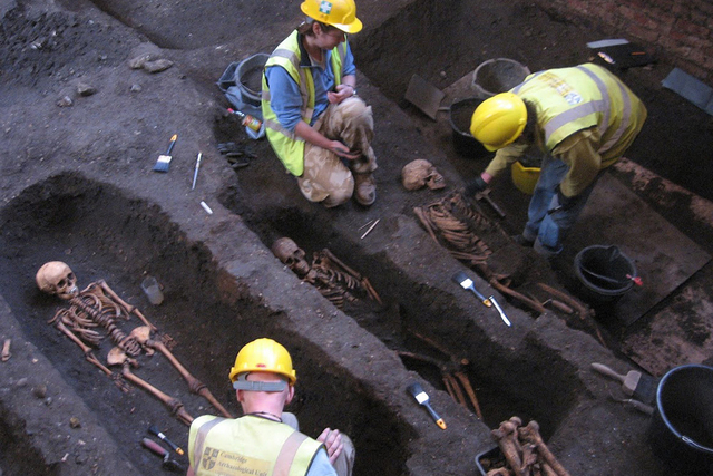 Researchers excavate the cemetery site during refurbishment of the Old Divinity School. (Craig Cessford/University of Cambridge)