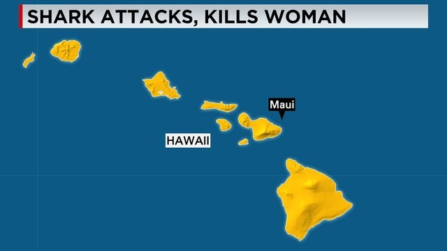 A woman died after a shark attack in Hawaii, prompting beach closures in nearby areas in Maui, authorities said. Snorkelers pulled the 65-year-old woman from the water Wednesday, April 29, 2015 mo ...