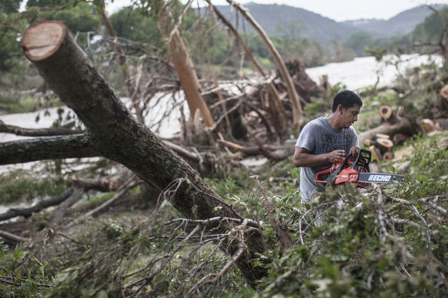 Wilber Gonzales uses a chainsaw to cut fallen tree trunks into small pieces along the banks of the Blanco River in Wimberley, Texas May 26, 2015. (REUTERS/Tamir Kalifa)