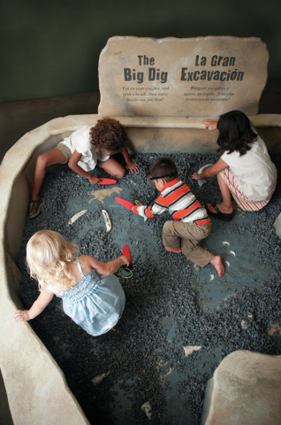 "Curious kids uncover and identify fossils in the Field Research Station, part of  the new ""Dinosaurs: Land of Fire and Ice"" exhibit opening Saturday at the Discovery Children's Museum. (Courtesy.)"