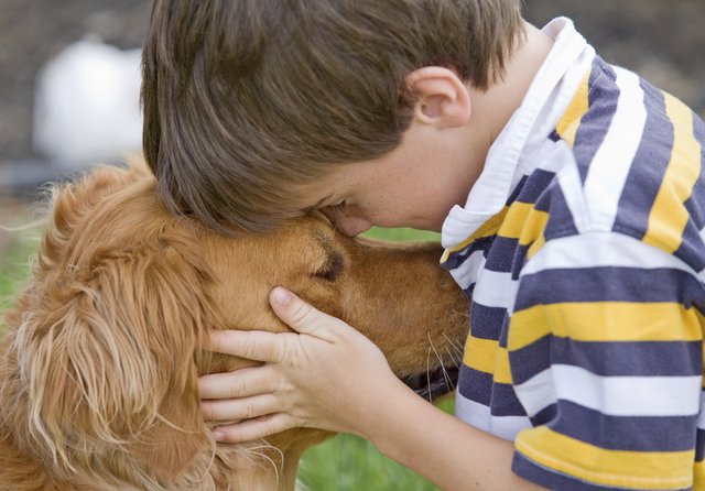 Children more likely to tell pets their problems than siblings, study says
