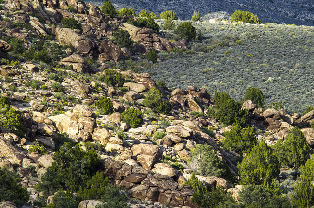 Rock outcroppings is seen Wednesday, May 20, 2015, in the Mount Irish Archaeological District, located about 130 miles north of Las Vegas. Over 800,000 acres in central Nevada is proposed as the B ...