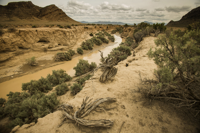 A creek runs in Coal Valley,  a three-hour drive north of Las Vegas, on Wednesday, May 20, 2015. Over 800,000 acres in central Nevada is proposed as the Basin and Range National Monument. (Jeff Sc ...