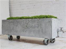 Concrete basin doubles as a planter and cooler