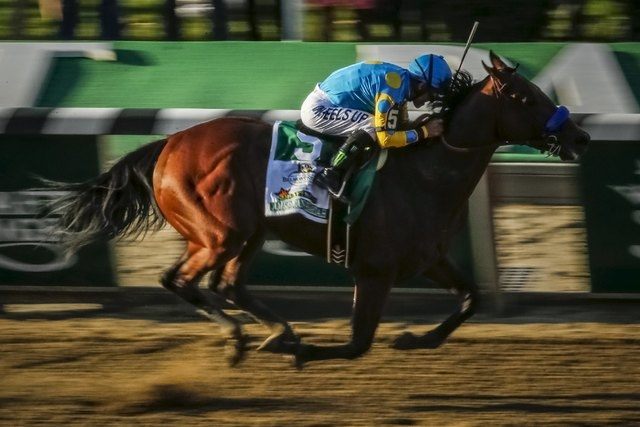 Jockey Victor Espinoza, aboard American Pharoah, races towards the finishes line to win the 147th running of the Belmont Stakes as well as the Triple Crown, in Elmont, New York June 6, 2015. (REUT ...