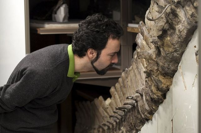 Sergio Bertazzo, a biomedical physical scientist at Imperial College in London, examines a fossil at Natural History Museum in London in this undated handout photo provided by Laurent Mekul, June  ...