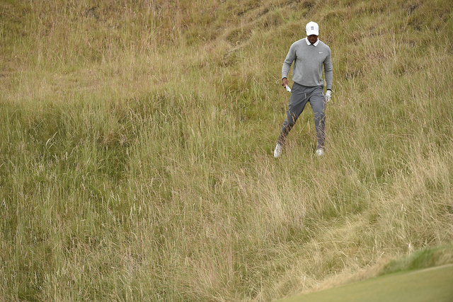 Jun 19, 2015; University Place, WA, USA; Tiger Woods looks for his ball in the rough along the 10th hole in the second round of the 2015 U.S. Open golf tournament at Chambers Bay. (John David Merc ...