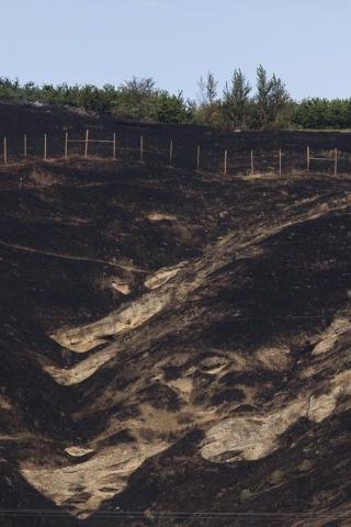 A hillside charred by the Sleepy Hollow fire is seen in Wenatchee, Washington June 29, 2015. (REUTERS/David Ryder)