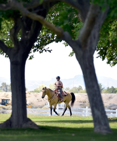 Christina Urmanski trail rides with her buckskin horse at Floyd Lamb Park at Tule Springs on Friday, June 5, 2015. The 680-acre park in the northwest valley, features wildlife, lush vegetation, la ...