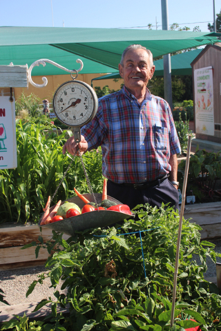 Exceptionnel Courtesy Of University Of Nevada Cooperative Extension Master Gardener Don  Fabbi At The City Of Las