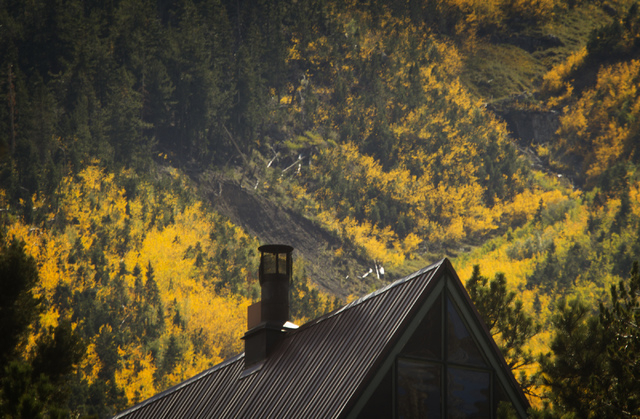 Aspens as seen above Mt. Charleston Lodge on Monday, Sept. 16, 2013. Although the colors can only be seen by the roads because the South Loop and Cathedral Trails are closed because of the Carpent ...