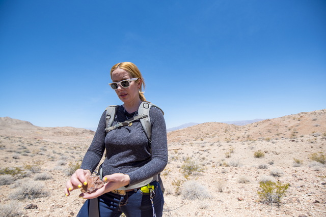 Kish LaPierre, an archaeologist, holds an artifact on a site on Nellis Air Force Base in Las Vegas on Wednesday, June 24, 2015. (Joshua Dahl/Las Vegas Review-Journal)