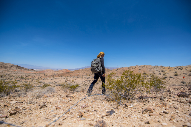 Kish LaPierre, an archaeologist, walks to a site on Nellis Air Force Base in Las Vegas to look for artifacts on Wednesday, June 24, 2015. (Joshua Dahl/Las Vegas Review-Journal)