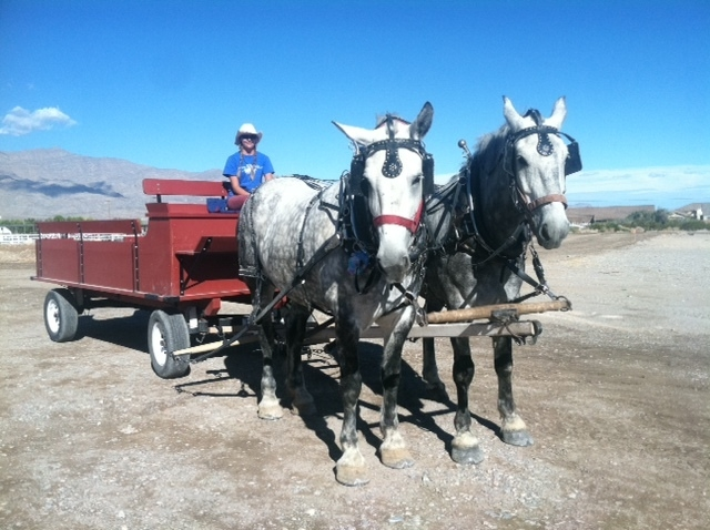 A horse-drawn wagon is seen at Floyd Lamb Park at Tule Springs, 9200 Tule Springs Road in Las Vegas, Oct. 2014. A Welcome to Las Vegas Open House is planned at 10 a.m. June 20 at Floyd Lamb Park a ...