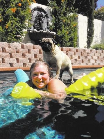 """Lynn Suedel of Henderson said, """"Where Gramma goes, Keno goes. Keno is a pug who loves to swim."""""""