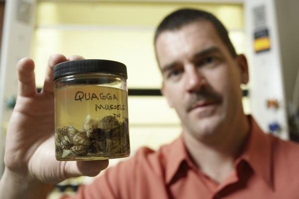 UNLV professor Shawn Gerstenberger holds a jar of quagga mussels on July 23, 2008. Gerstenberger and former UNLV professor Wai Hing Wong have edited a new textbook on the aquatic pests. Photo cour ...