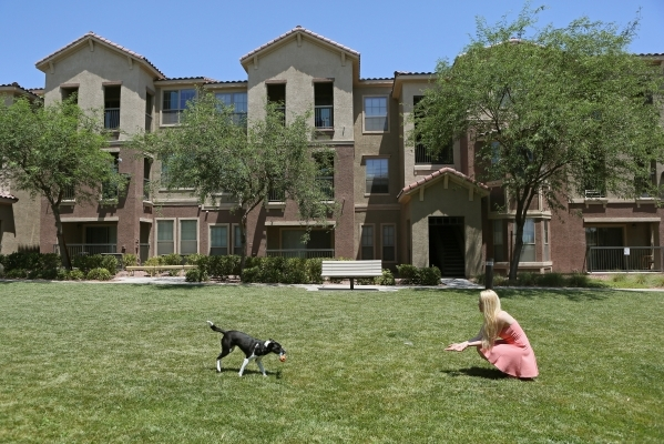 Alexis Gibson plays fetch with her dog Saydee in a grassy area outside of her home in North Las Vegas. (Ronda Churchill/Las Vegas Review-Journal)