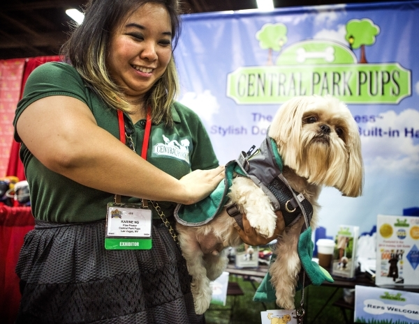 Karen Ng demonstrates on the Central Park Pups harness on Chewie during the Super Zoo convention at the Mandalay Bay Convention Center,  3950 South Las Vegas Boulevard, on Tuesday, July 21, 2015.  ...