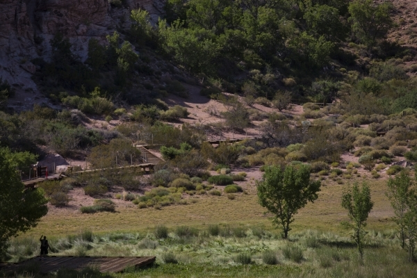 A closed off portion of the boardwalk is seen above at the Red Springs picnic area in the Red Rock Canyon National Conservation Area on Tuesday, July 21, 2015. A portion of the boardwalk is closed ...