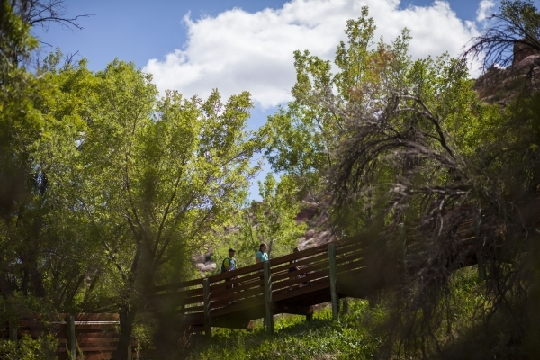 People walk along the boardwalk at the Red Springs picnic area in the Red Rock Canyon National Conservation Area on Tuesday, July 21, 2015. A portion of the boardwalk is closed off due to needing  ...