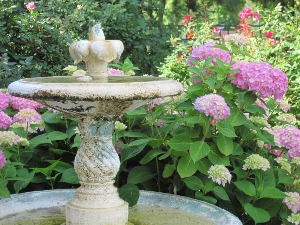For instant garden transformation in Las Vegas, just add water – Las ...