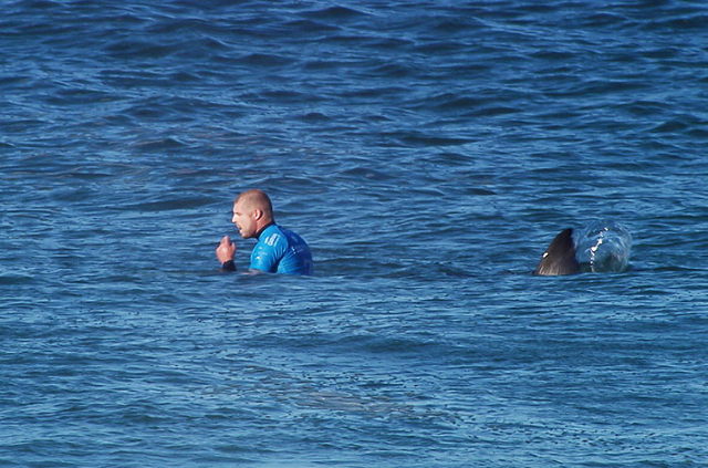 Mick Fanning of Australia is seen shortly before being attacked by a shark during the finals of the J-Bay Open in Jeffrey's Bay, South Africa, on Sunday. (Reuters)