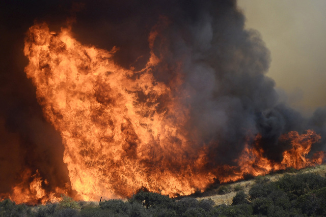 Walls of fire shoot into the air from a 200-acre brush fire burning in the hills north of Los Angeles on June 24, 2015.  (REUTERS/Gene Blevins)