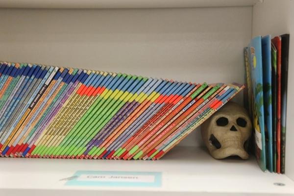 Books are seen in Vivian Cushman's third-grade classroom at Piggott Elementary School, 9601 Red Hills Road, Aug.  3. (James Tensuan/View) (Follow