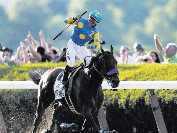 American Pharoah, with Victor Espinoza aboard, revels in the fans' cheers after clinching the Triple Crown with a victory in the Belmont Stakes on June 6 at Elmont, N.Y. SHANNON STAPLETON/RE ...