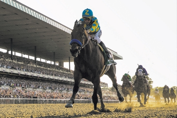 Jockey Victor Espinoza, aboard American Pharoah, passes the finish line to win the 147th running of the Belmont Stakes as well as the Triple Crown, in Elmont, New York June 6, 2015.  REUTERS/Lucas ...