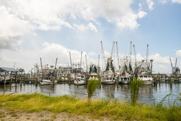 Shrimp boats rest in a harbor in Long Beach, Miss. on Saturday, Aug. 15, 2015. (Joshua Dahl/Las Vegas Review-Journal)