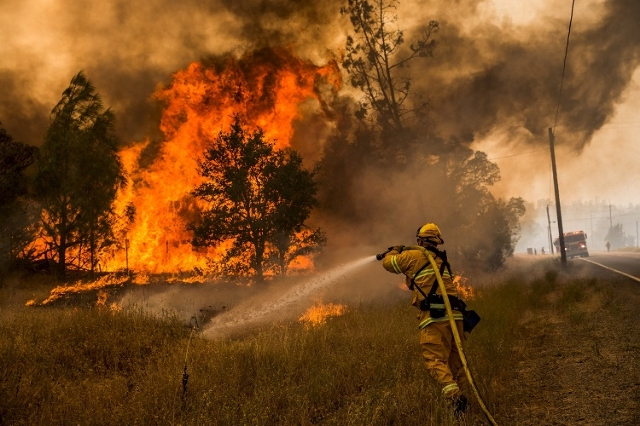 Firefighter battles the Rocky Fire (Reuters/Max Whittaker)