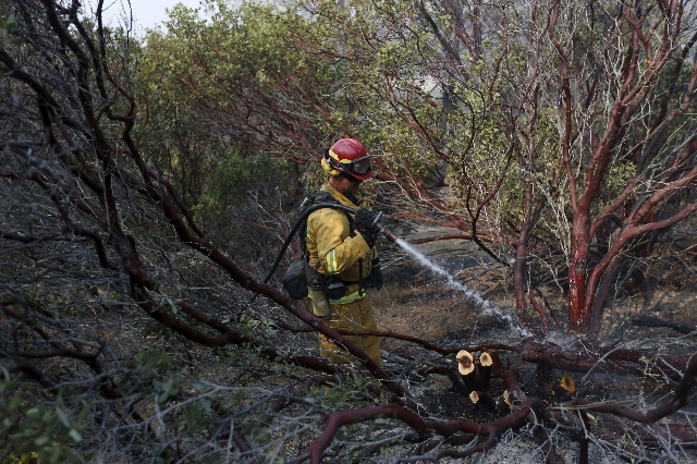 A firefighter douses a hotspot during the Rocky Fire near Clearlake, California August 5, 2015. (Stephen Lam/Reuters)