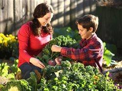 Fear of frost? Tips to keep your garden growing through fall's chill
