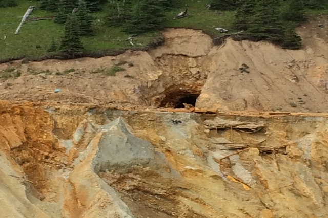 Three million gallons of heavy metal filled with wastewater spilled into the Animas River in southern Colorado beginning August 5, 2015, according to the U.S. Geological Survey. Levels of lead in  ...