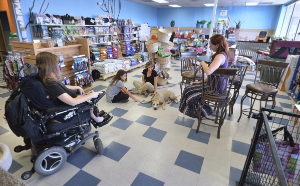 The interior of Hearts Alive Village Las Vegas is shown at 1720 S. Rainbow Blvd. on Thursday, Aug. 27, 2015. The adoption center and pet supply store was founded by Kendall Stevens and her mother  ...