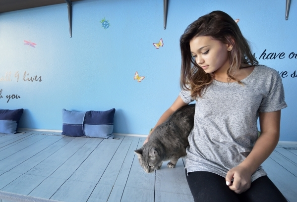 Kendall Stevens hangs out with Izzy in the cat room at Hearts Alive Village Las Vegas at 1720 S. Rainbow Blvd. on Thursday, Aug. 27, 2015. The adoption center and pet supply store was founded by K ...