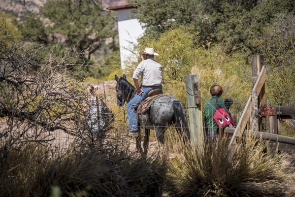 A horse is ridden during Pioneer Day at Spring Mountain Ranch State Park in Blue Diamond, Nev. on Saturday, Sept. 19, 2015. Joshua Dahl/Las Vegas Review-Journal