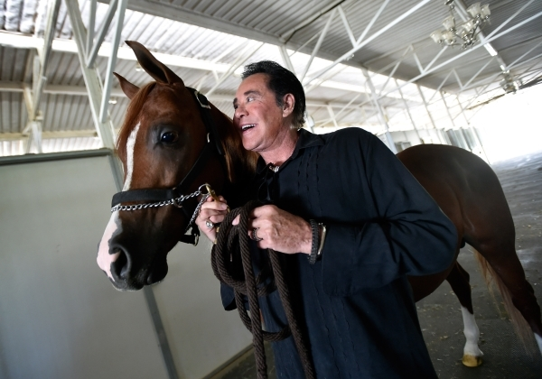 """Wayne Newton and one of his Arabian horses, """"Just a Dream,"""" share a moment at Casa de Shenandoah on Monday, Sept. 14, 2015, in Las Vegas. The ranch at Sunset and Pecos roads in Las Vegas ..."""