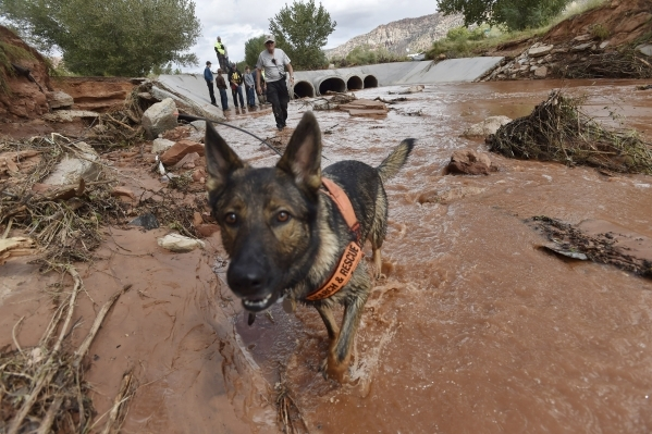 Rescuers search along the Short Creek bank after a flash flood in Hildale, Utah September 15, 2015. At least eight people were killed near Utah's border with Arizona when flash floods trigge ...