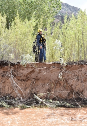 A rescuer walks along the bank of Short Creek while searching for missing residents after a flash flood in Hildale, Utah September 15, 2015. At least eight people were killed near Utah's bor ...
