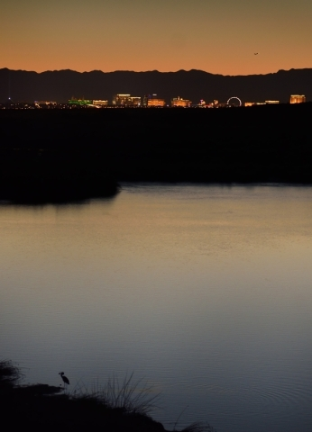 The Strip is seen from the wetlands in east Henderson on Friday, Sept. 18, 2015. Bill Hughes/Las Vegas Review-Journal
