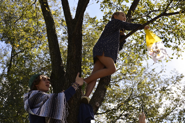 Children climb a tree on the White House Ellipse to get a better view of Pope Francis in Washington September 23, 2015. REUTERS/James Lawler Duggan