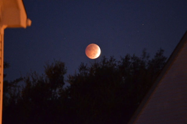 """Marie Diaz of Virginia Beach, Virgina took this photograph of the """"Blood Moon"""" lunar eclipse on October 8, 2014. A """"Blood Moon"""" is a dramatic lunar eclipse where the moon appea ..."""