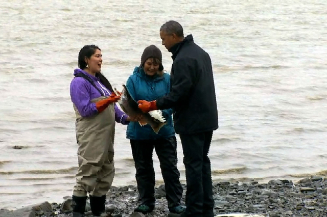 During his historic trip to Alaska, President Barack Obama spent some time fishing at Kanakanak Beach in Dillingham and in a comical moment, a salmon spawned on his shoes. Wearing a pair of orange ...