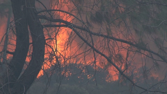 **Embargo: Sacramento, CA**   Thousands in northern California fled for their lives as brutal wildfires gobbled up their homes by the hundreds Sunday, September 13, 2015. The Valley Fire, about 11 ...